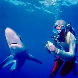 Valerie Taylor, Shark Hunter
